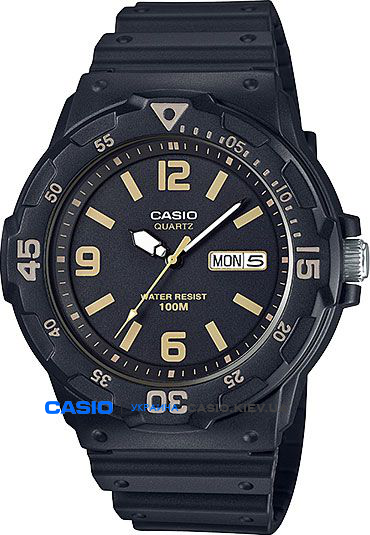 MRW-200H-1B3VEF, Casio Standard Analogue