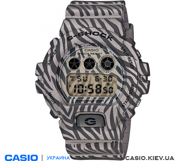 DW-6900ZB-8ER, Casio G-Shock